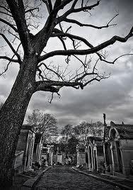 arbre et tombeaux