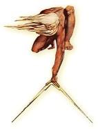 dessin représentant Dieu avec un compas