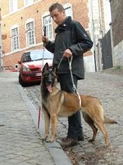 personne aveugle et son chien