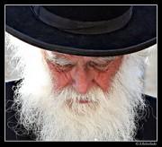rabbin - http://www.flickr.com/photos/30673183@N06/5676362982 Found on flickrcc.net