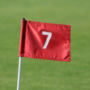 drapeau avec le chiffre 7 - http://www.flickr.com/photos/49968232@N00/3334850695 Found on flickrcc.net